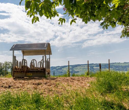 Futterstelle Landwirtschaft