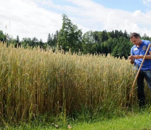 Damian Müller Landwirtschaft
